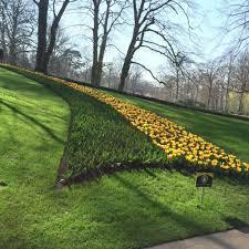 flower garden in amsterdam keukenhof tulip gardens thingstodoinamsterdam com