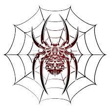 spider on web tattoo design