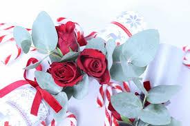 Christmas Flowers Christmas Flower Diy Botanical Xmas Cracker The Smell Of Roses