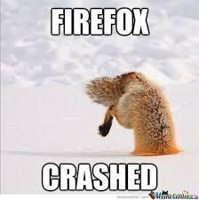 Funny Animal Meme - funny animal memes