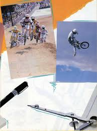 avigo extreme motocross bike bmxmuseum com reference 1987 haro designs products guide