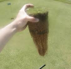 putting green construction manual 2002 news page