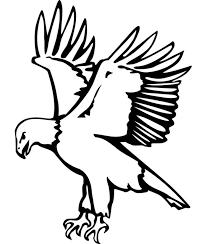 eagle template animal templates free u0026 premium templates