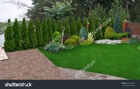 Backyard Privacy Landscaping Ideas by Backyard Backyard Privacy Landscape Design Ideas For Small