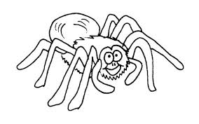 free spider coloring pages spider pictures to print coloring pages