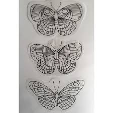 traditional butterfly on moth traditional
