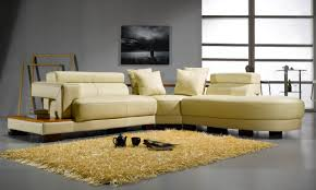 Best Place To Buy A Sofa by Keep Your Modern Sofa Looking New Protect If From Your Pets La