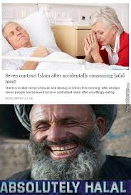 Halal Memes - halal memes best collection of funny halal pictures
