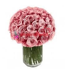 Dozen Roses Send 5 Dozen Roses To Vietnam Vietnam U0027s Florist