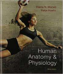 Fundamentals Of Anatomy And Physiology 9th Edition Download Anatomy Image Organs Page 81 Cool Pearson Human Anatomy And