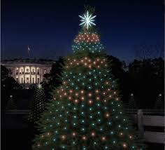 and coding light up the white house trees the new