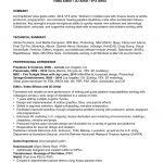 Video Resume Sample Resume Template 89 Extraordinary Example Of A Professional Sales