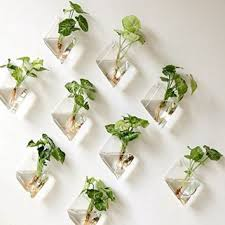 planters that hang on the wall best hanging wall planters products on wanelo