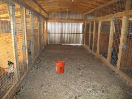 Backyard Chickens Forum by Pic Of Our Breeding Barn Backyard Chickens