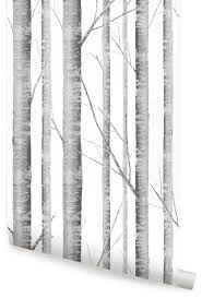 birch tree wallpaper peel and stick contemporary wallpaper