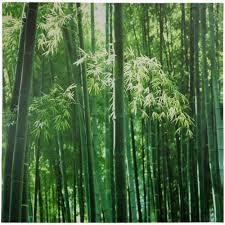 deep forest green bamboo canvas wall art walmart com