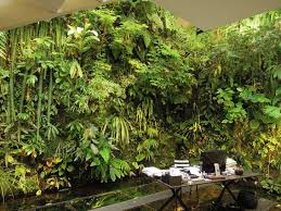 living room indoor 2017 living wall planter 2017 living wall