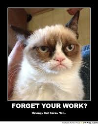 This Is The End Meme Generator - grumpy cat pictures with captions forget your work grumpy