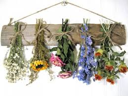 Dry Flowers Different Methods For Preserving Or Drying Flowers Feltmagnet