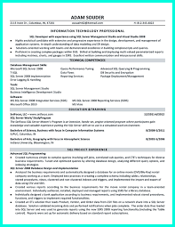Access Database Developer Database Developer Resume Resume For Your Job Application