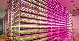 t5 vs led grow lights led grow light t8 t5 led plant grow light 1 2m 30w 18w as the fill
