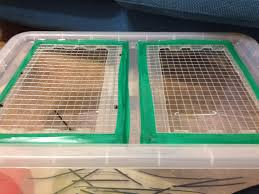halloween cage decorations hamster diy youtube great diy for a rat playpen ratty babies pinterest hamster