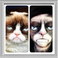 halloween makeup idea grumpy cat makeup transformation youtube