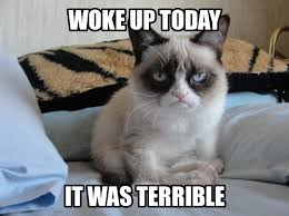 Original Grumpy Cat Meme - grumpy cat on mondays uploaded by kristin polega