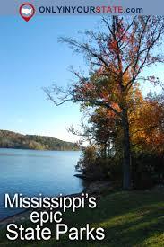 Mississippi travel socks images 328 best mississippi images mississippi southern jpg