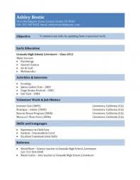 resume examples appealing 10 great professional resume template