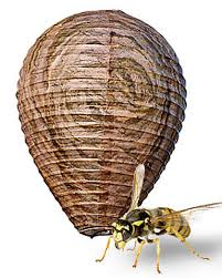 Bee Deterrent For Patio Wasp Repellent Fake Wasp Nest Natural Wasp Deterrent