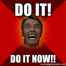 Arnold Schwarzenegger Memes - arnold schwarzenegger do it now meme memes pinterest arnold
