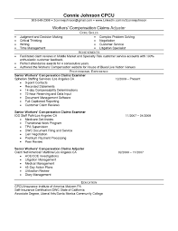 sample underwriter resume life insurance resume samples resume for your job application professional curriculum vitae resume template for all job seekers throughout resume for life