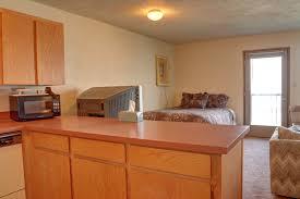 Pre Manufactured Kitchen Cabinets Pre Manufactured Kitchen Cabinets Kitchen Design Ideas