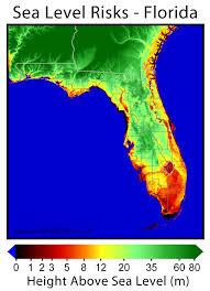 florida topo map florida sea level risks png