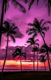 best 25 sunset vacations ideas on pinterest summer sunset
