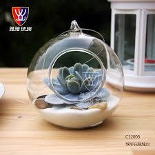 10cm big terrarium borosilicate hanging glass flower vase round