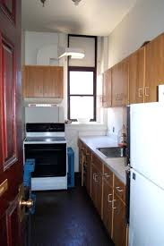 Ikea Galley Kitchens Galley Kitchen Planning Ideas Layout Advantages And Disadvantages