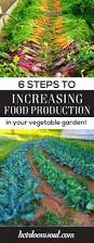 What To Plant In Your Vegetable Garden by 6 Ways To Increase Food Production In Your Organic Vegetable