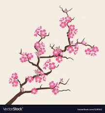 cherry blossom flowers card with stylized cherry blossom flowers vector image