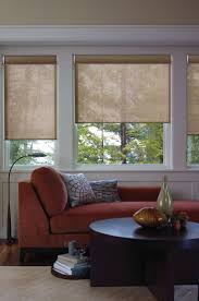 Roller Shade 116 Best Roller Shades Images On Pinterest Window Coverings
