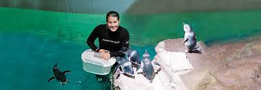 internship programs new england aquarium