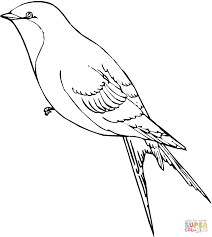 swallow coloring page free printable coloring pages