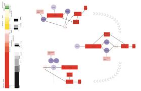 program diagram joowon u0027s architecture studio