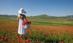 immagini di giardini fioriti i giardini fioriti pi禮 belli viaggiatori e turisti
