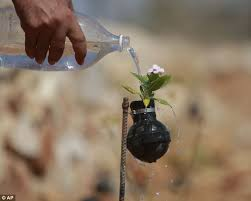 Flower Bomb Definition - palestinian gardener uses spent tear gas canisters as plant pots