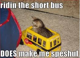 Short Bus Meme - 27 best roots in the sky images on pinterest cers vans and