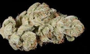 wedding cake kush 4 must try cannabis strains in san diego apothekare best