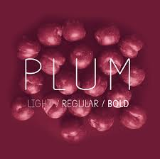 Font To Use On Resume Plum Fun Free Font On Behance