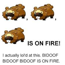 Bidoof Meme - is on fire i actually lol d at this bidoof bidoof bidoof is on fire